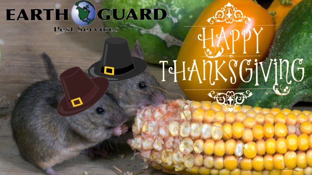 thanksgiving-earth-guard