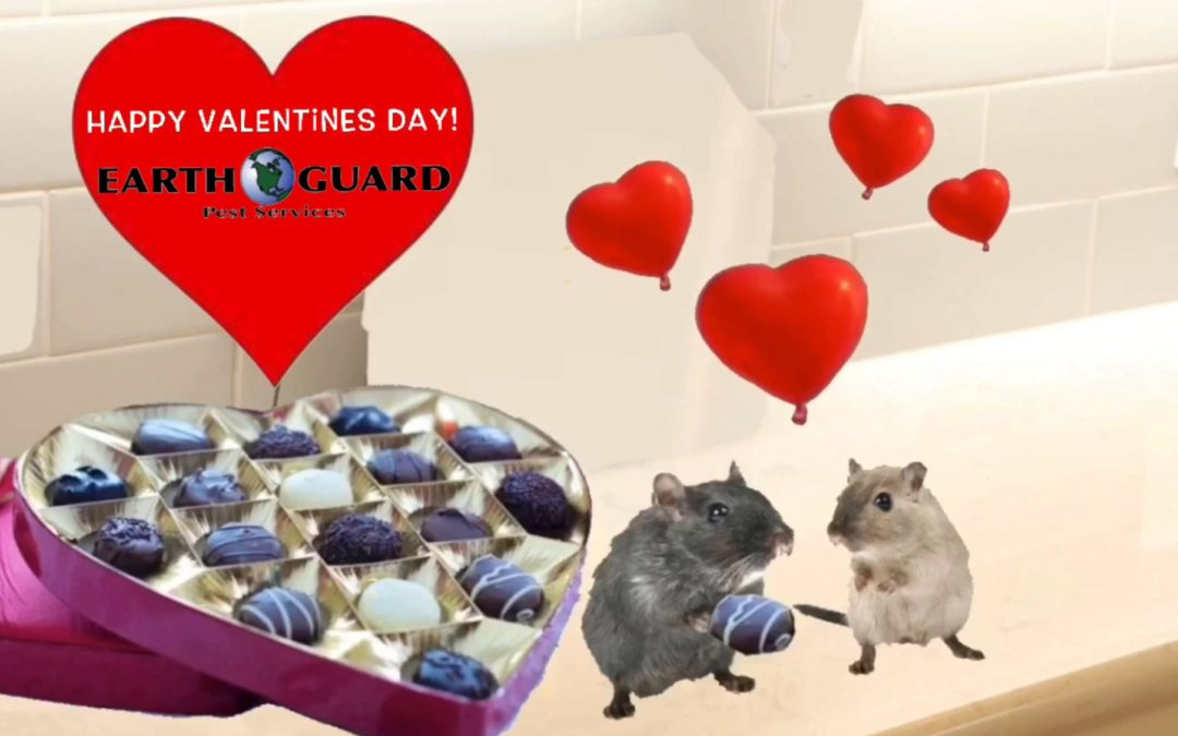 Happy Valentine's Day from Earth Guard mice with hearts and candy