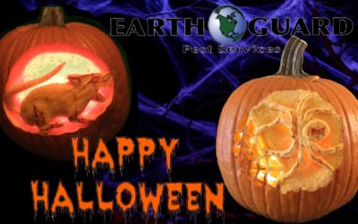 Happy Halloween From Earth Guard Pest Services!