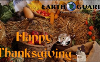 Happy Thanksgiving from Earth Guard Pest Services